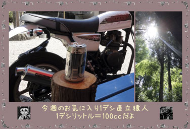 ape100cc48e.jpg