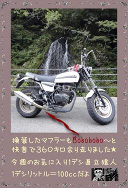 ape100cc53g.jpg
