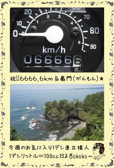ape100cc56b.jpg