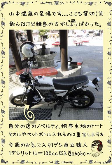 ape100cc57d.jpg