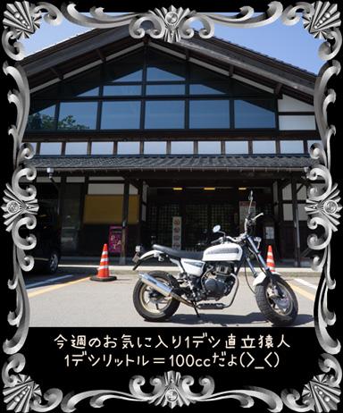 ape20160518c.jpg