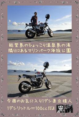 ape100cc51a.jpg