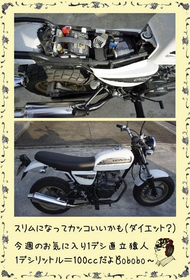 ape100cc58c.jpg