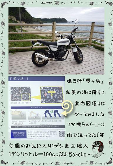 ape100cc62c.jpg