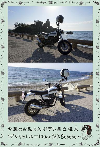 ape100cc62d.jpg